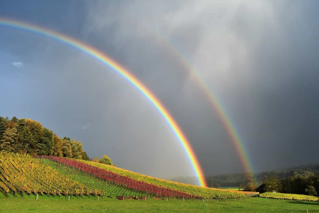 Double Rainbow Meaning Is Love